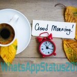 Beautiful Good Morning Images With Quotes   Good Morning Wallpaper   Good Morning Photos
