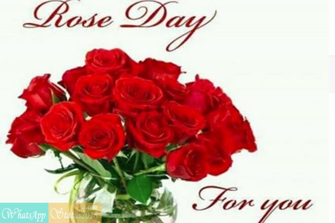 Rose Day 2019 Greeting Pictures And Images