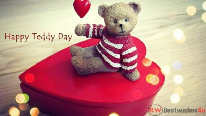 Happy Teddy Day Images 2019: Teddy Bear Images, Teddy Day Wallpaper, Whatsapp Status