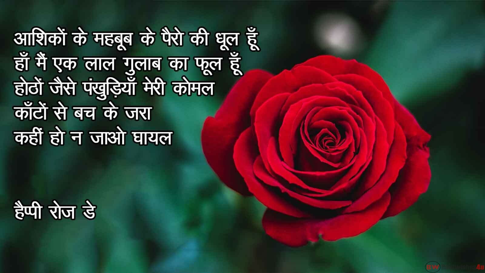 Rose Day Shayari In Hindi 2020, Rose Day Wishes, Rose Day Quotes, Rose Day Messages